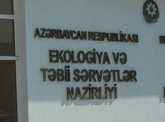 """Nazirlik """"ifrat təhlükəli"""" ifadəsinə münasibət bildirdi"""