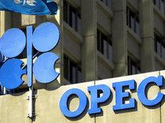 Özbəkistan OPEC-də müşahidəçi statusu alıb