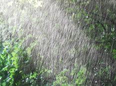 Yağış yağacaq, külək əsəcək - HAVA PROQNOZU
