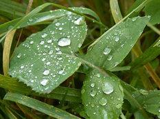 """Yağış, dolu... - <span class=""""color_red"""">Sabahın HAVAsı</span>"""